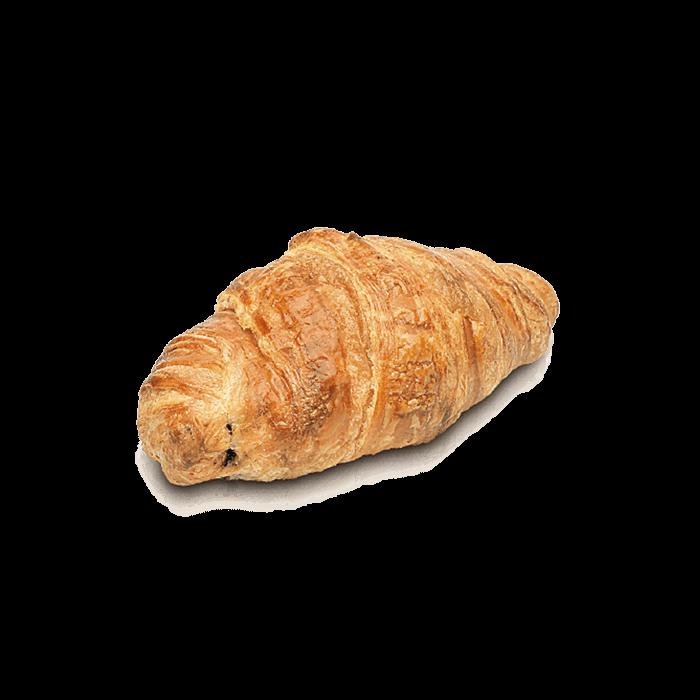Mini caracola